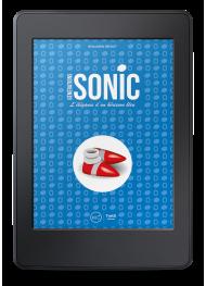 Générations Sonic. L'élégance d'un hérisson bleu - ebook